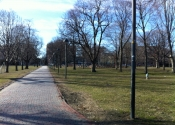 Cambridge Common, play park in distance